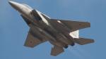 SVMさんが、岐阜基地で撮影した航空自衛隊 F-15DJ Eagleの航空フォト(写真)