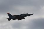 7915さんが、築城基地で撮影した航空自衛隊 T-4の航空フォト(写真)