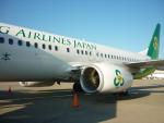ミシュラン787さんが、成田国際空港で撮影した春秋航空日本 737-8ALの航空フォト(写真)
