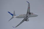 E-75さんが、函館空港で撮影した全日空 737-881の航空フォト(写真)