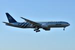 saoya_saodakeさんが、成田国際空港で撮影したアリタリア航空 777-243/ERの航空フォト(写真)