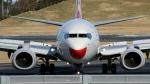 raichanさんが、成田国際空港で撮影した海南航空 737-84Pの航空フォト(写真)