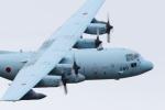 Koenig117さんが、岐阜基地で撮影した航空自衛隊 C-130H Herculesの航空フォト(写真)