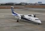 だいまる。さんが、松山空港で撮影したANAウイングス DHC-8-402Q Dash 8の航空フォト(写真)