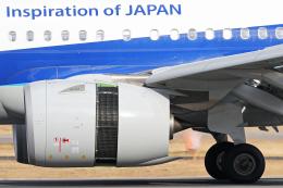 Double_Hさんが、伊丹空港で撮影した全日空 A321-272Nの航空フォト(飛行機 写真・画像)