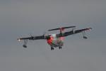 パラノイアさんが、岩国空港で撮影した海上自衛隊 US-1Aの航空フォト(写真)
