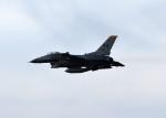 パラノイアさんが、三沢飛行場で撮影したアメリカ空軍 F-16CM-50-CF Fighting Falconの航空フォト(写真)