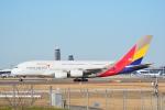 LEGACY-747さんが、成田国際空港で撮影したアシアナ航空 A380-841の航空フォト(飛行機 写真・画像)