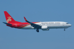 よっしぃさんが、関西国際空港で撮影した深圳航空 737-87Lの航空フォト(写真)