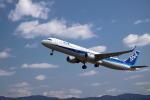 wish-blueさんが、高知空港で撮影した全日空 A321-211の航空フォト(写真)