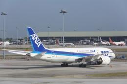 安芸あすかさんが、クアラルンプール国際空港で撮影した全日空 787-8 Dreamlinerの航空フォト(飛行機 写真・画像)