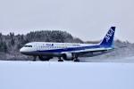 Dojalanaさんが、函館空港で撮影した全日空 A320-211の航空フォト(写真)