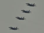 NFファンさんが、厚木飛行場で撮影したアメリカ海軍 F/A-18F Super Hornetの航空フォト(写真)