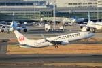 prado120さんが、羽田空港で撮影した日本航空 737-846の航空フォト(写真)