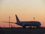 まさ773さんが、羽田空港で撮影した日本航空 787-8 Dreamlinerの航空フォト(写真)