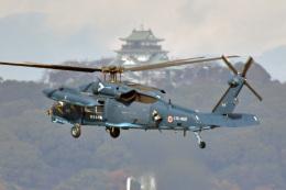 鈴鹿@風さんが、名古屋飛行場で撮影した航空自衛隊 UH-60Jの航空フォト(飛行機 写真・画像)