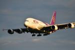 saoya_saodakeさんが、成田国際空港で撮影したタイ国際航空 A380-841の航空フォト(写真)