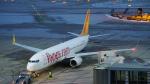 lufthansa9919さんが、シュトゥットガルト空港で撮影したペガサス・エアラインズ 737-82Rの航空フォト(写真)