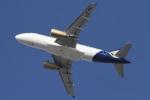 camelliaさんが、ドバイ国際空港で撮影したシャヒーン・エア A319-132の航空フォト(写真)