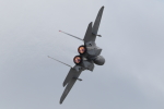 Koenig117さんが、岐阜基地で撮影した航空自衛隊 F-15DJ Eagleの航空フォト(写真)