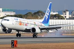 Double_Hさんが、伊丹空港で撮影した全日空 737-881の航空フォト(飛行機 写真・画像)