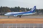 ゆういちさんが、鹿児島空港で撮影したANAウイングス 737-54Kの航空フォト(写真)