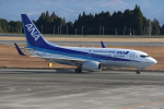 ゆういちさんが、鹿児島空港で撮影した全日空 737-781の航空フォト(写真)