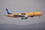 けいとパパさんが、新千歳空港で撮影した全日空 777-281/ERの航空フォト(写真)