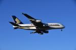 あさかぜみずほさんが、成田国際空港で撮影したシンガポール航空 A380-841の航空フォト(写真)