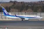 神宮寺ももさんが、成田国際空港で撮影した全日空 737-881の航空フォト(写真)