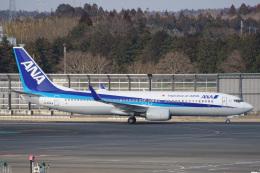 神宮寺ももさんが、成田国際空港で撮影した全日空 737-881の航空フォト(飛行機 写真・画像)