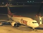東亜国内航空さんが、仁川国際空港で撮影したティーウェイ航空 737-8HXの航空フォト(写真)