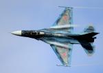 new_2106さんが、岐阜基地で撮影した航空自衛隊 F-2Aの航空フォト(写真)