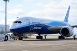 Joshuaさんが、中部国際空港で撮影したボーイング 787-8 Dreamlinerの航空フォト(写真)