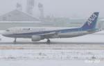 RINA-200さんが、小松空港で撮影した全日空 A320-211の航空フォト(写真)
