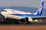 SKY KOCHIさんが、高知空港で撮影した全日空 737-881の航空フォト(写真)