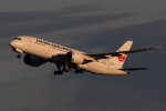 shootingstarさんが、羽田空港で撮影した日本航空 787-8 Dreamlinerの航空フォト(写真)