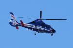 yabyanさんが、中部国際空港で撮影した東邦航空 AS365N2 Dauphin 2の航空フォト(飛行機 写真・画像)