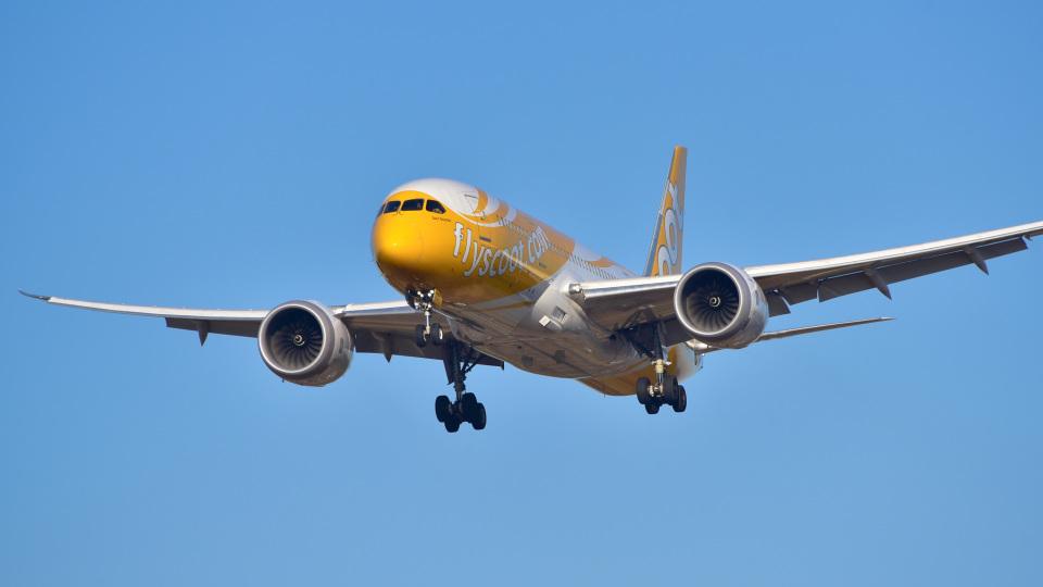 パンダさんのスクート Boeing 787-8 Dreamliner (9V-OFD) 航空フォト