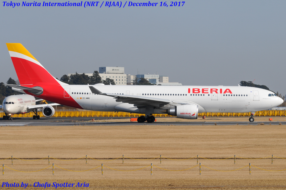 Chofu Spotter Ariaさんのイベリア航空 Airbus A330-200 (EC-MMG) 航空フォト