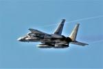hidetsuguさんが、千歳基地で撮影した航空自衛隊 F-15J Eagleの航空フォト(写真)