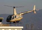 LOTUSさんが、八尾空港で撮影した賛栄商事 R66の航空フォト(写真)