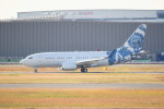 kumagorouさんが、羽田空港で撮影したBBJ One 737-7CJ BBJの航空フォト(写真)