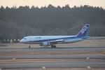 blueskyさんが、成田国際空港で撮影した全日空 A320-214の航空フォト(写真)