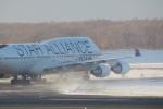 GRX135さんが、新千歳空港で撮影したタイ国際航空 747-4D7の航空フォト(写真)