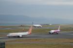 FRTさんが、関西国際空港で撮影したチェジュ航空 737-85Fの航空フォト(飛行機 写真・画像)