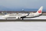 たみぃさんが、新千歳空港で撮影した日本航空 737-846の航空フォト(写真)