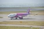 FRTさんが、関西国際空港で撮影したピーチ A320-214の航空フォト(飛行機 写真・画像)