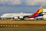 あしゅーさんが、成田国際空港で撮影したアシアナ航空 A380-841の航空フォト(飛行機 写真・画像)