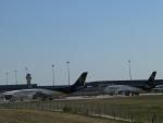 M.Ochiaiさんが、ダラス・フォートワース国際空港で撮影したUPS航空 A300F4-622Rの航空フォト(写真)